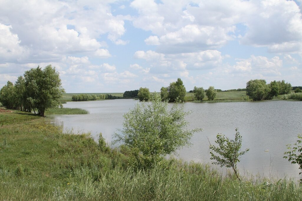 рыбалка алексеевский район волгоградская область