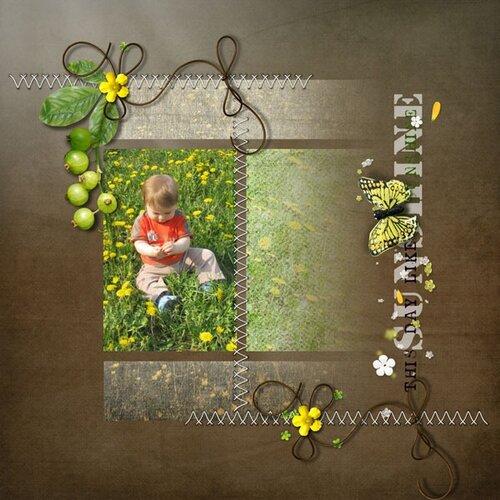 «июнь в лесу»  0_6b54d_a96f9956_L