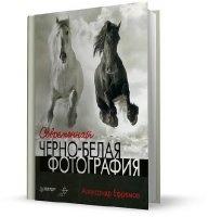 Книга Александр Ефремов - Современная черно-белая фотография (2011)