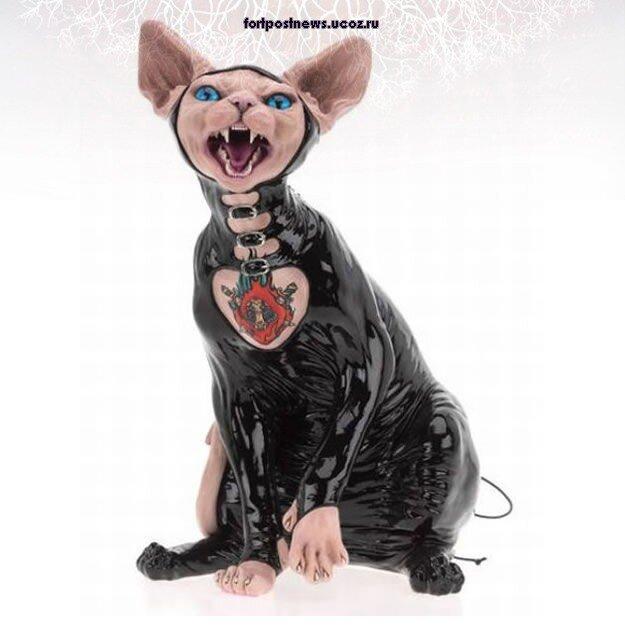 Кошачие готы - сфинксы