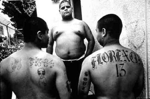 Мексиканская мафия