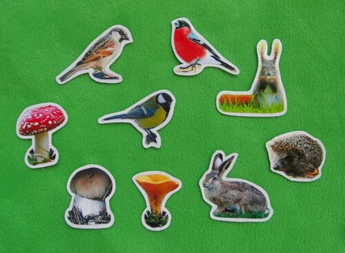 Развивающий коврик Семьландия... карточки Птицы, Грибы, Животные