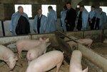 _Зампред облправительства С.И.Горбунов на нашей ферме 2.jpg