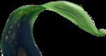 ldavi-nomoremonsters-greenleaf1.png