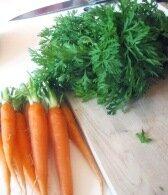 ботва моркови_botva morkovi
