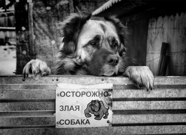 http://img-fotki.yandex.ru/get/4412/130422193.21/0_67031_e1368f12_orig