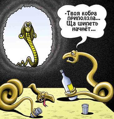 жена змея.jpg