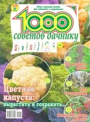 Журнал 1000 советов дачнику №10 2013