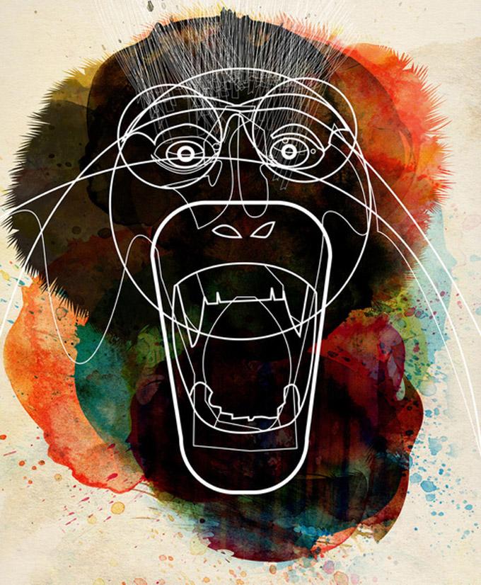A macacada reunida
