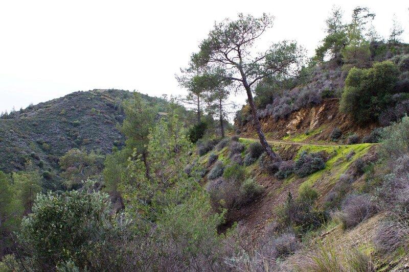 Кипр, дорога в горах