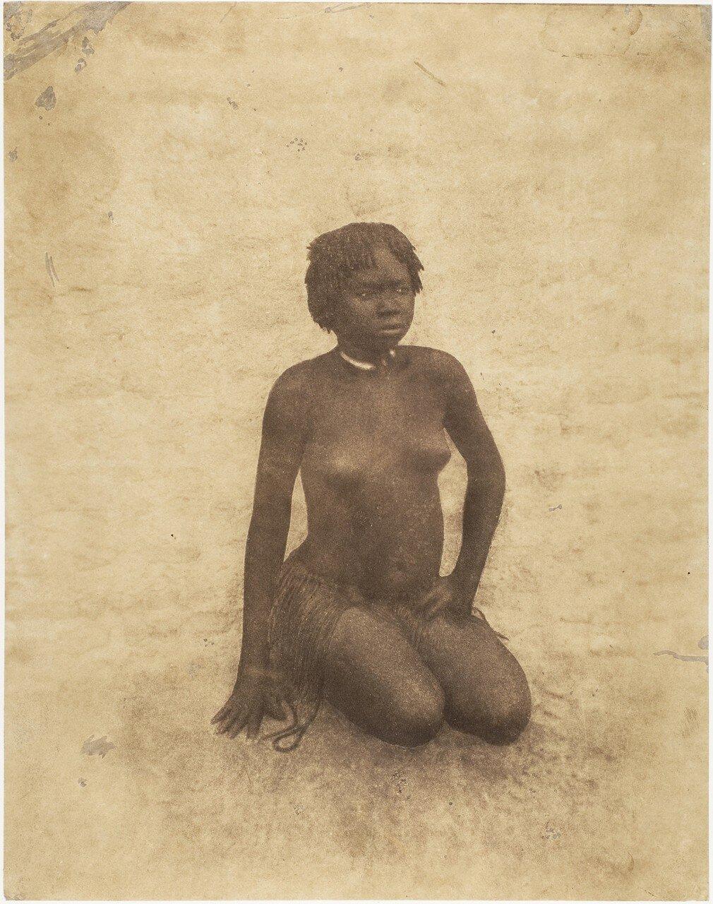 1853. Молодая нубийка
