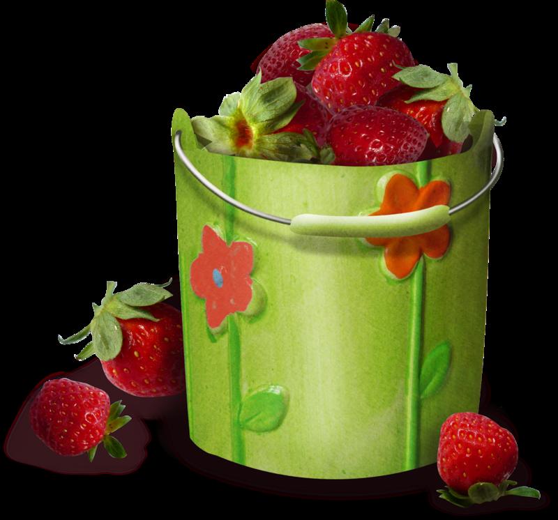 bee_fraisia_el147.png