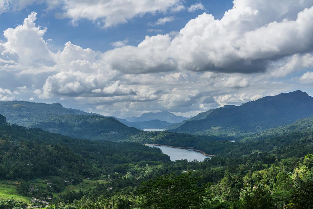 Шри-Ланка: чай и красота