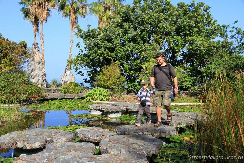 Достопримечательности Пуэрто Круз - Парк Акватико