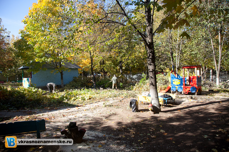2011.10.03 Вырубка деревьев в ДОУ 4