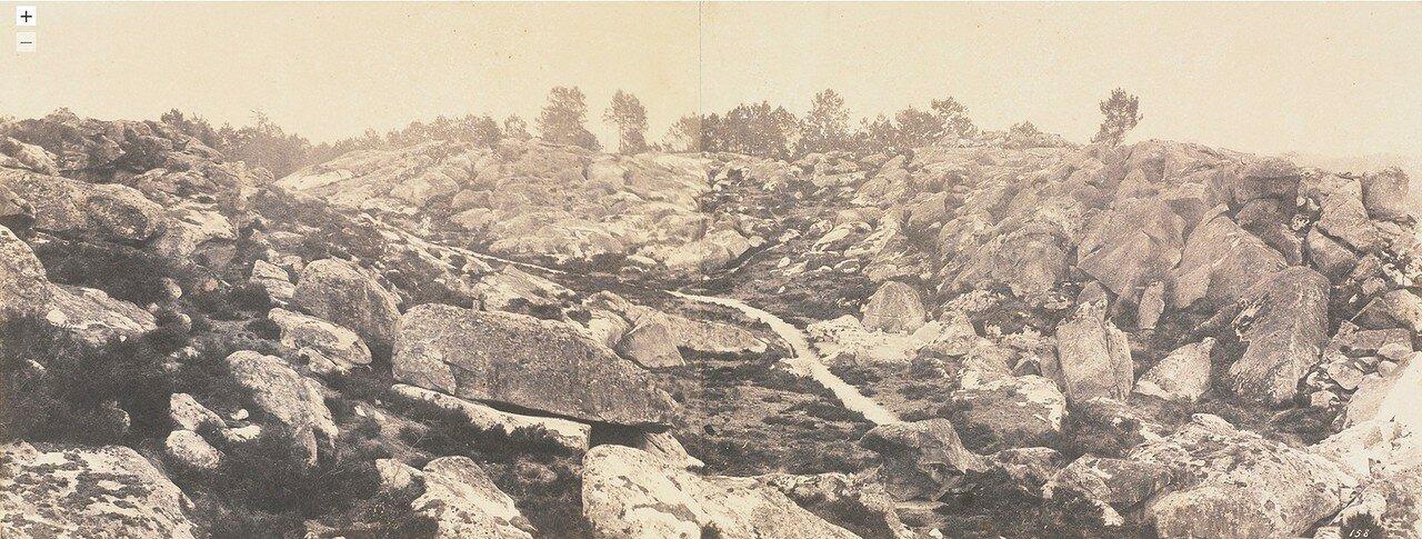 1874. Панорама леса Фонтебло