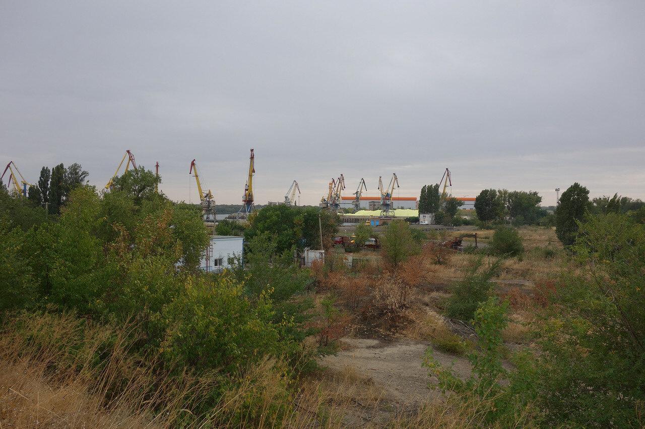 порт и желтые вещества