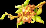 ldavi-wildwatermelonparty-melonflowerbranch1.png