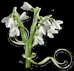 весенние цветы (25).png