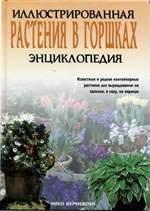 Книга Растения в горшках