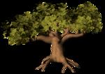 GC_EF_tree_5.png