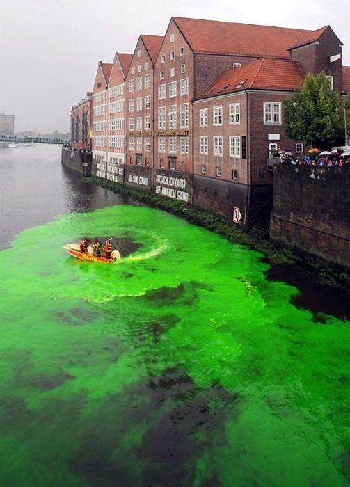 Картинки Смехота-21: Разлили краску и вода стала зеленая