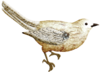 catherinedesigns_R-C23_Bird1.png