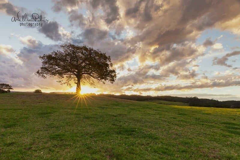 Уильям Патиньо: Фотография помогла мне посмотреть на мир в новом свете