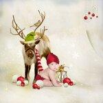 магия Рождества (65)