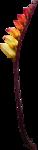 осенние тропинки (80)