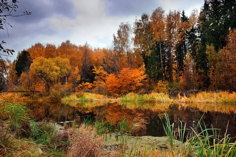 Autumn landscape 04