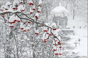 Скоро первый снег,первые морозцы......