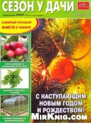 Сезон у дачи № 22 2009