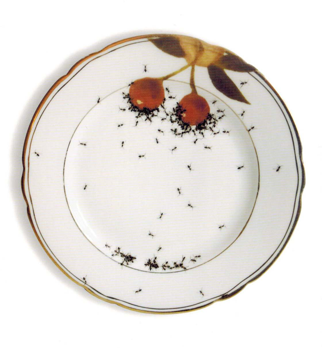 Ants everywhere - The disturbing tableware of Evelyn Bracklow