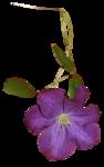 Secret Garden Flower6.png