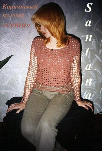 Коричневый пуловер сети