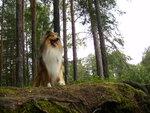 царь горы...