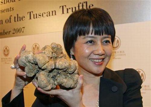 Трюфели - аристократы грибного царства. Мифы и советы
