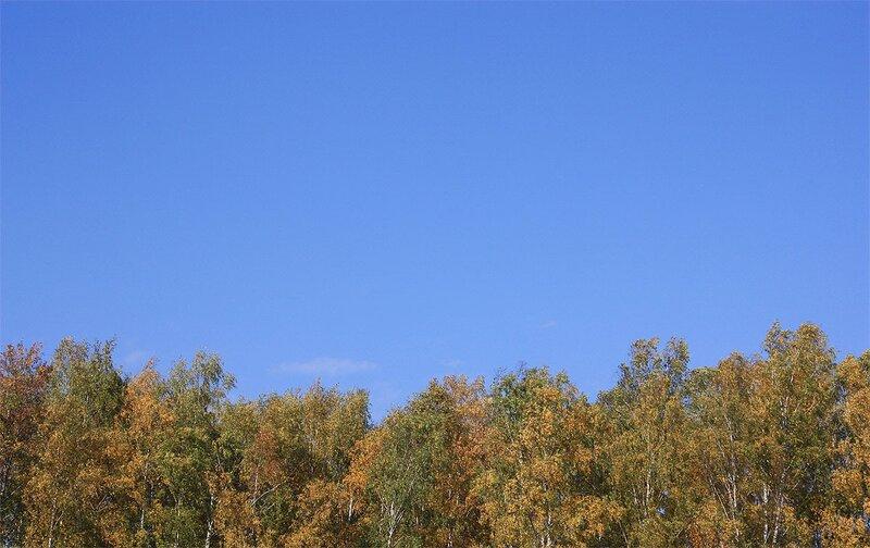 7 октября 2011, дача