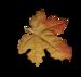 волшебная осень (143)