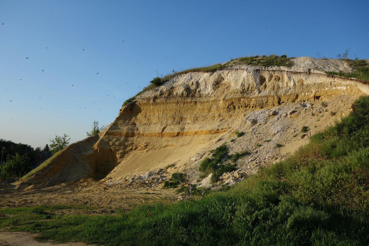 'геологический разрез' с гнездами в селе Костенки