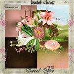 Seachell_Sweet Pea