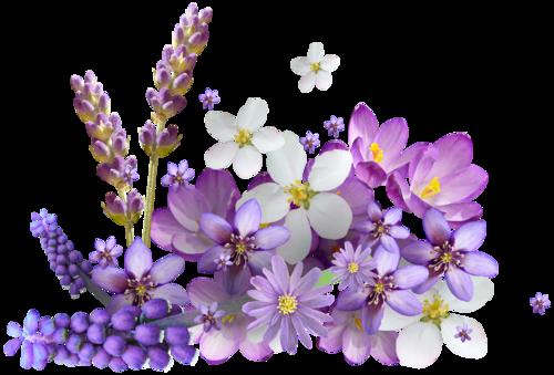 весенние цветы (6).png