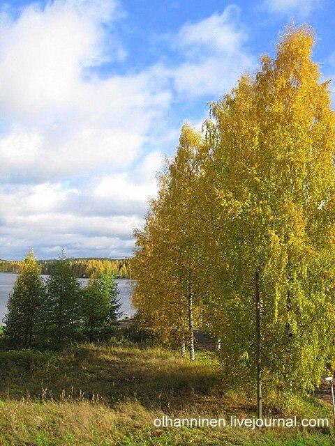Осень в Варкаусе