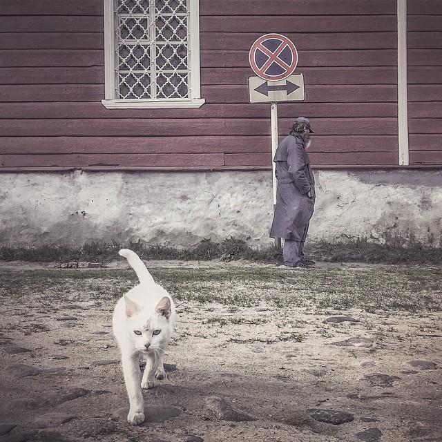Фотограф из Пскова получил премию за лучшие фото в Instagram 0 14462d 958ab9ba orig