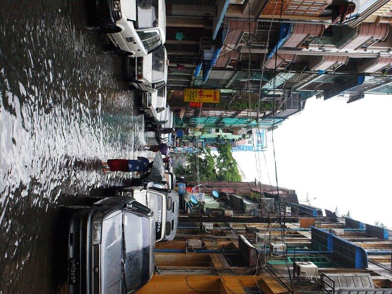 Сезон дождей в Янгоне ч.7 Крокодил на потолке