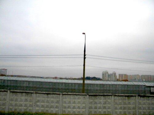 В граде Московском днём