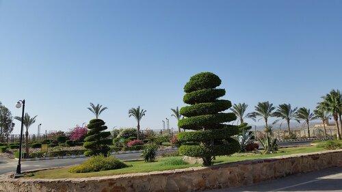 Марса-Алам,El Malikia Abu Dabbab отзыв об отдыхе 2015