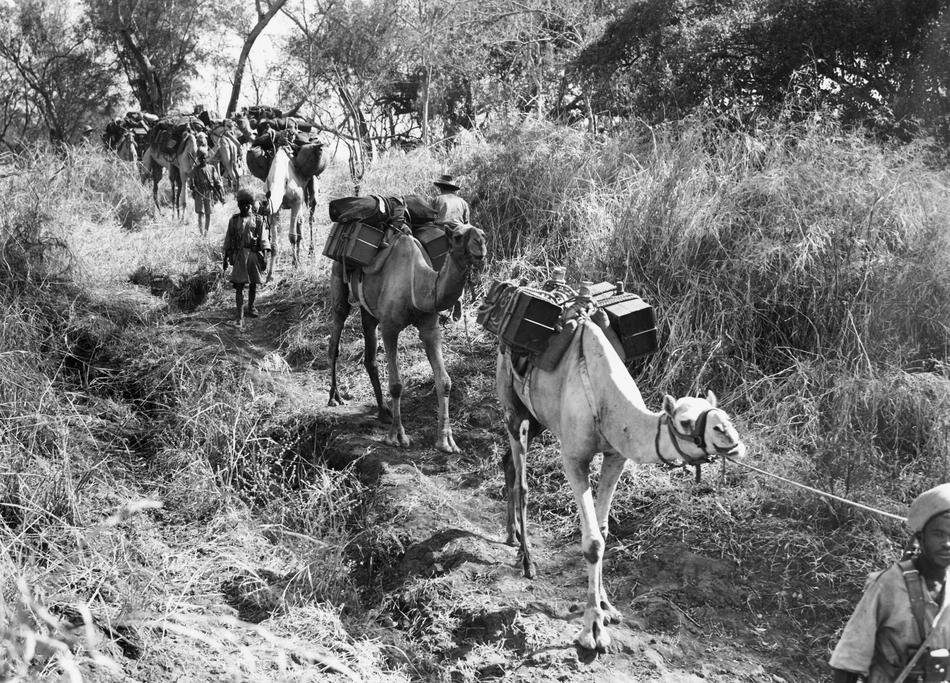 WWII Ethiopia British Troops 1941