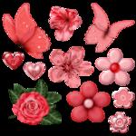 pink1_eanori.png